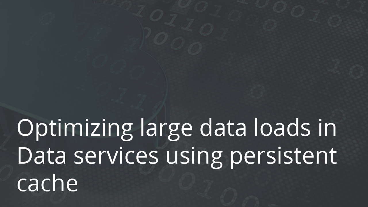 Optimizing Large Data Loads in Data Services Using Persistent Cache